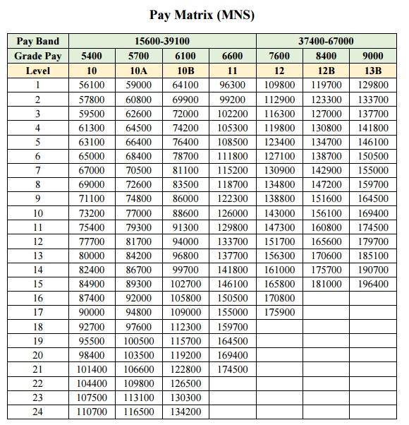 Pay matrix mns