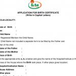 Download Andhra Pradesh Birth Certificate form